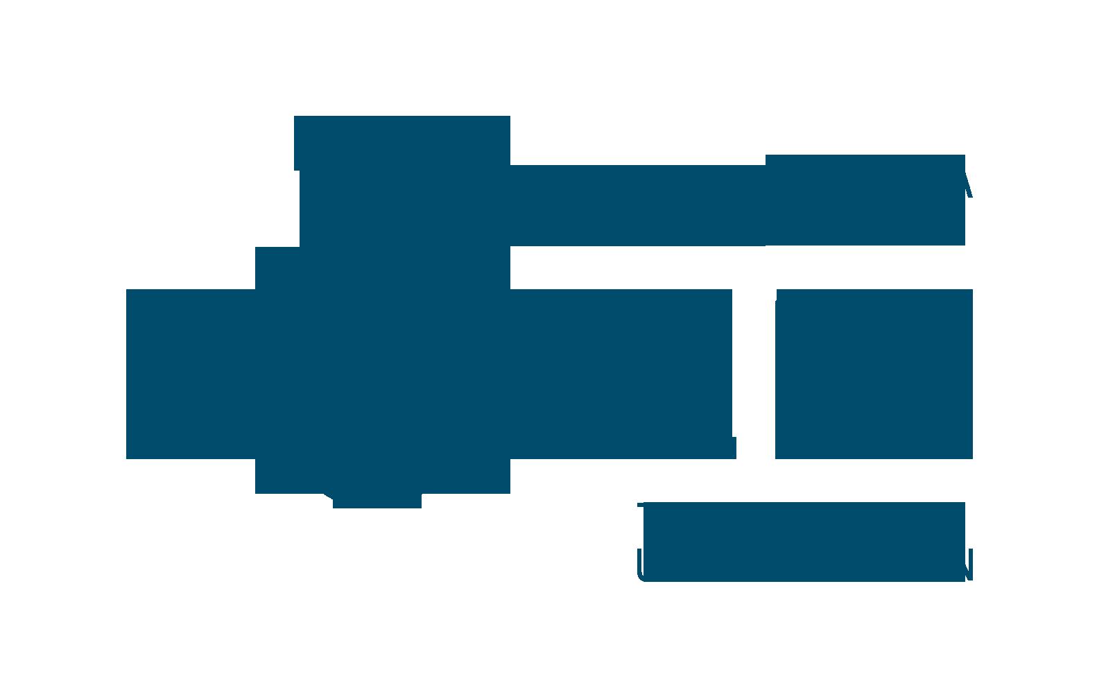 Technological University of dublin